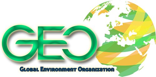 GEO - Global Environment Organization