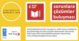 Problems-Solutions-Meeting, UNDP, Zorlu Holding